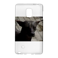 mexican hairless / Xoloitzcuintle Samsung Galaxy Note Edge Hardshell Case