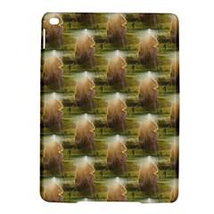 Sophia Apple Ipad Air 2 Hardshell Case