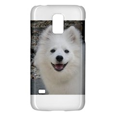 American Eskimo Dog Samsung Galaxy S5 Mini Hardshell Case