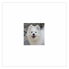 American Eskimo Dog Large Satin Scarf (square)
