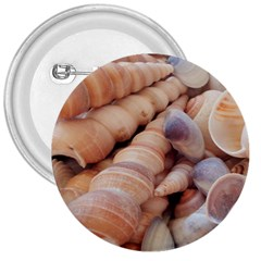 Seashells 3000 4000 3  Button