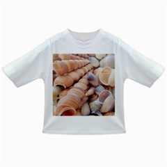 Seashells 3000 4000 Baby T-shirt