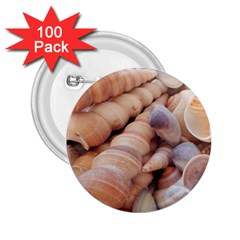 Seashells 3000 4000 2 25  Button (100 Pack)