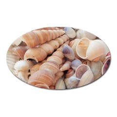 Seashells 3000 4000 Magnet (Oval)