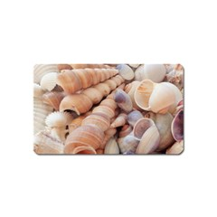 Seashells 3000 4000 Magnet (Name Card)