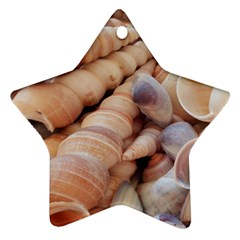 Seashells 3000 4000 Star Ornament (Two Sides)