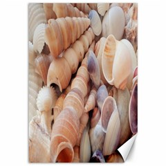 Seashells 3000 4000 Canvas 12  x 18  (Unframed)