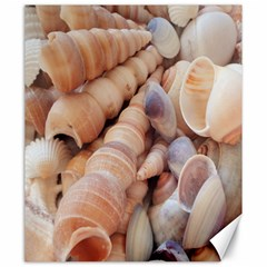 Seashells 3000 4000 Canvas 20  x 24  (Unframed)