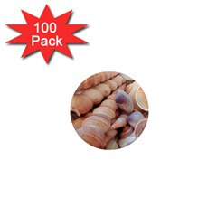 Sea Shells 1  Mini Button Magnet (100 pack)