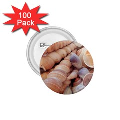 Sea Shells 1 75  Button (100 Pack)