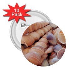 Sea Shells 2 25  Button (10 Pack)