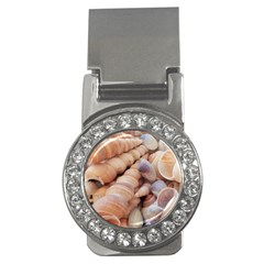 Sea Shells Money Clip (cz)