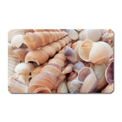 Sea Shells Magnet (Rectangular)
