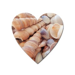 Sea Shells Magnet (heart)