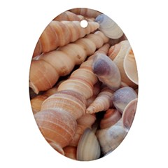 Sea Shells Oval Ornament (Two Sides)