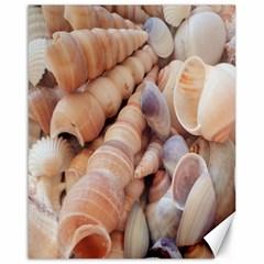 Sea Shells Canvas 16  X 20  (unframed)