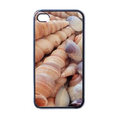 Sea Shells Apple iPhone 4 Case (Black)