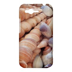 Sea Shells HTC Rhyme Hardshell Case