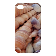 Sea Shells Apple iPhone 4/4S Premium Hardshell Case