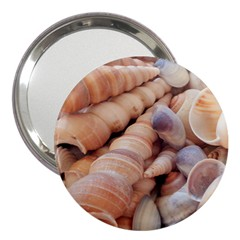 Sea Shells 3  Handbag Mirror