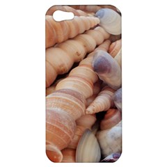 Sea Shells Apple Iphone 5 Hardshell Case