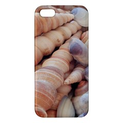 Sea Shells Apple iPhone 5 Premium Hardshell Case