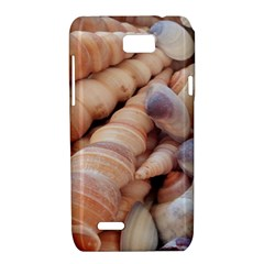 Sea Shells Motorola XT788 Hardshell Case