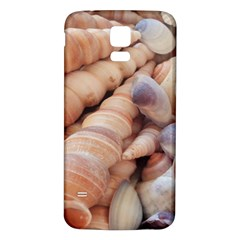 Sea Shells Samsung Galaxy S5 Back Case (White)