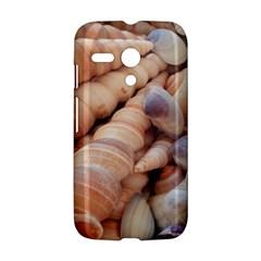 Sea Shells Motorola Moto G Hardshell Case