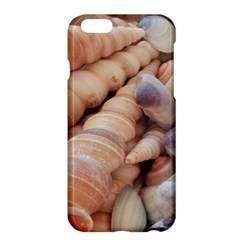 Sea Shells Apple iPhone 6 Plus Hardshell Case