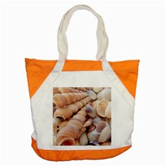 Sea Shells Accent Tote Bag