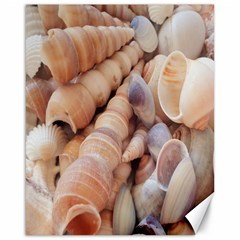 Sea Shells Canvas 16  x 20  (Unframed)