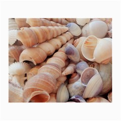 Sea Shells Glasses Cloth (Small, Two Sided)