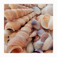 Sea Shells Glasses Cloth (medium, Two Sided)