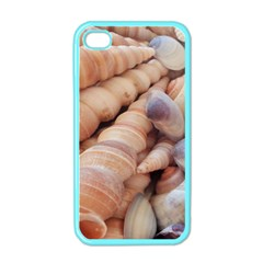 Sea Shells Apple Iphone 4 Case (color)