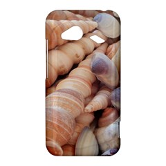 Sea Shells HTC Droid Incredible 4G LTE Hardshell Case