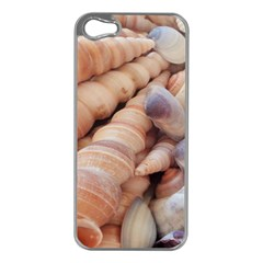 Sea Shells Apple iPhone 5 Case (Silver)