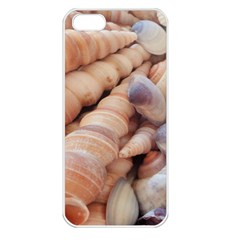Sea Shells Apple iPhone 5 Seamless Case (White)