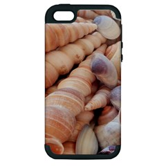 Sea Shells Apple iPhone 5 Hardshell Case (PC+Silicone)