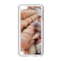 Sea Shells Apple iPod Touch 5 Case (White)