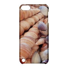 Sea Shells Apple Ipod Touch 5 Hardshell Case With Stand