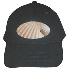 Sunny White Seashells Black Baseball Cap
