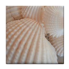 Sunny White Seashells Ceramic Tile