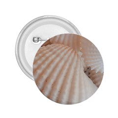 Sunny White Seashells 2.25  Button