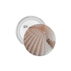 Sunny White Seashells 1.75  Button