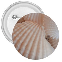 Sunny White Seashells 3  Button