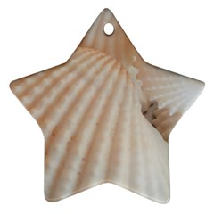 Sunny White Seashells Star Ornament