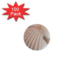 Sunny White Seashells 1  Mini Button Magnet (100 Pack)
