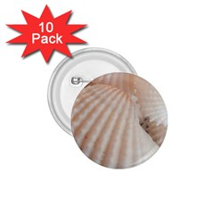 Sunny White Seashells 1 75  Button (10 Pack)