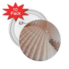 Sunny White Seashells 2.25  Button (10 pack)
